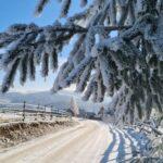 (FOTO) Raiul zăpezii din Măguri Răcătău: Fotografii de vis din inima Apusenilor